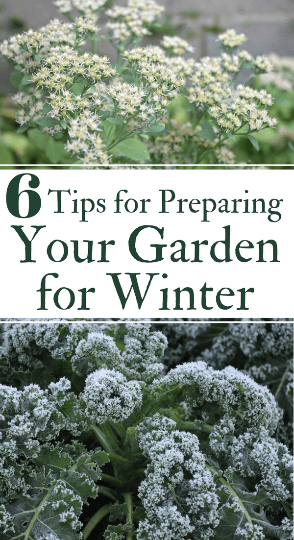 Prepare Garden For Winter .