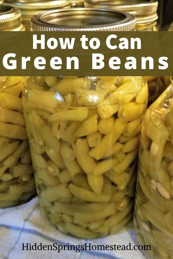 canning green beans. Hidden Springs Homestead