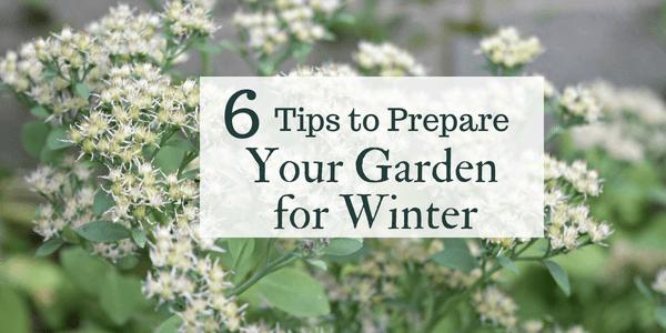 Prepare Garden for Winter