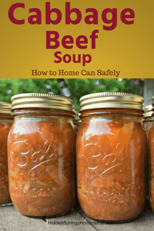 can cabbage beef soup in a jar