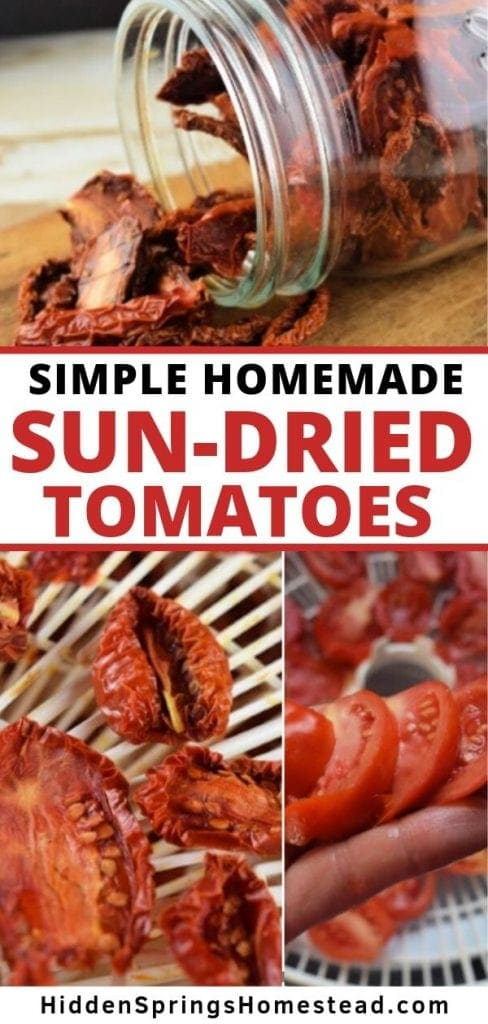 Easy Sun Dried Tomatoes In A Dehydrator Hidden Springs Homestead